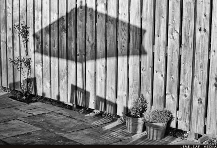 shadow of umbrella